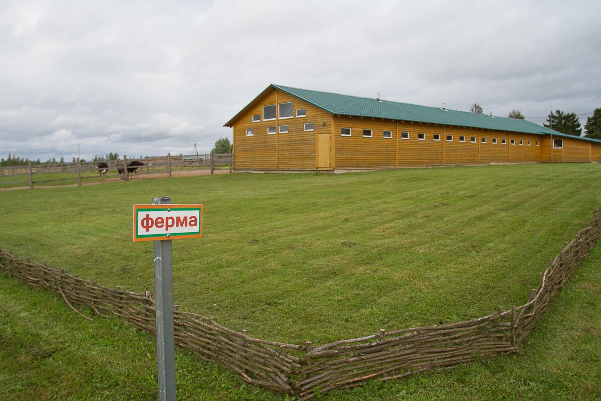 Фермеров-предпринимателей приглашают принять участие в бизнес-акселераторе «Мой успешный агробизнес»
